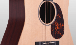 martin dx1ae closeup