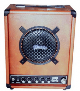 pignose beest battery powered amp
