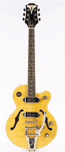 vertical image of read epiphone wildkat
